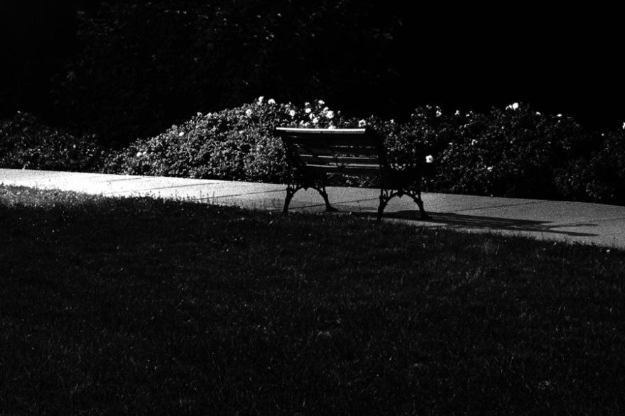 PF Night Bench
