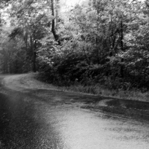 In The Rain G.Fraser Fine Art Photography 6x8 Matted 11x14 $55.00 11x14 Matted 16x20 $125.00