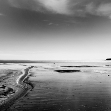 When the tide has gone... G.Fraser Fine Art Photography 6x8 Matted 11x14 $55.00 11x14 Matted 16x20 $125.00